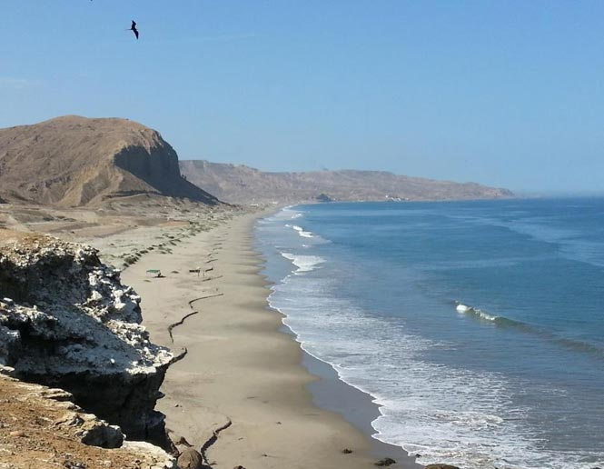 coastal Sand beaches and mudflats