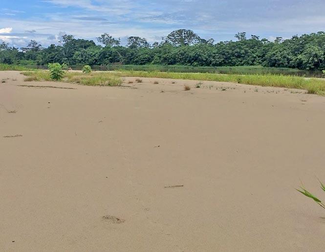 riverine sand beaches