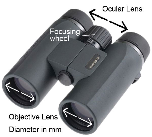 aperture-and-magnification-power_binoculars
