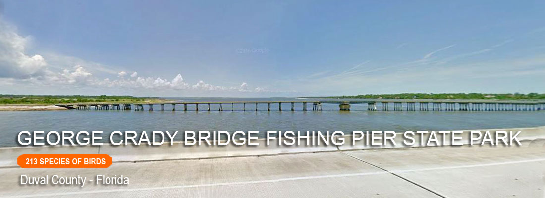 George Crady Bridge Fishing Pier State Park