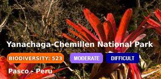 yanachaga-chemillen national park