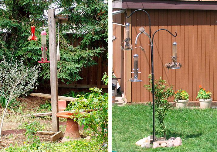bird feeder-poles