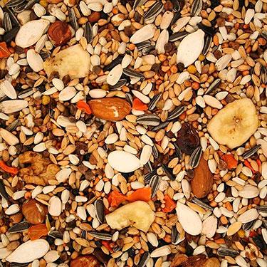 mixed seed bird food