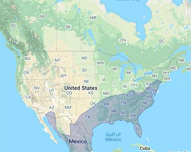 black-vulture range map