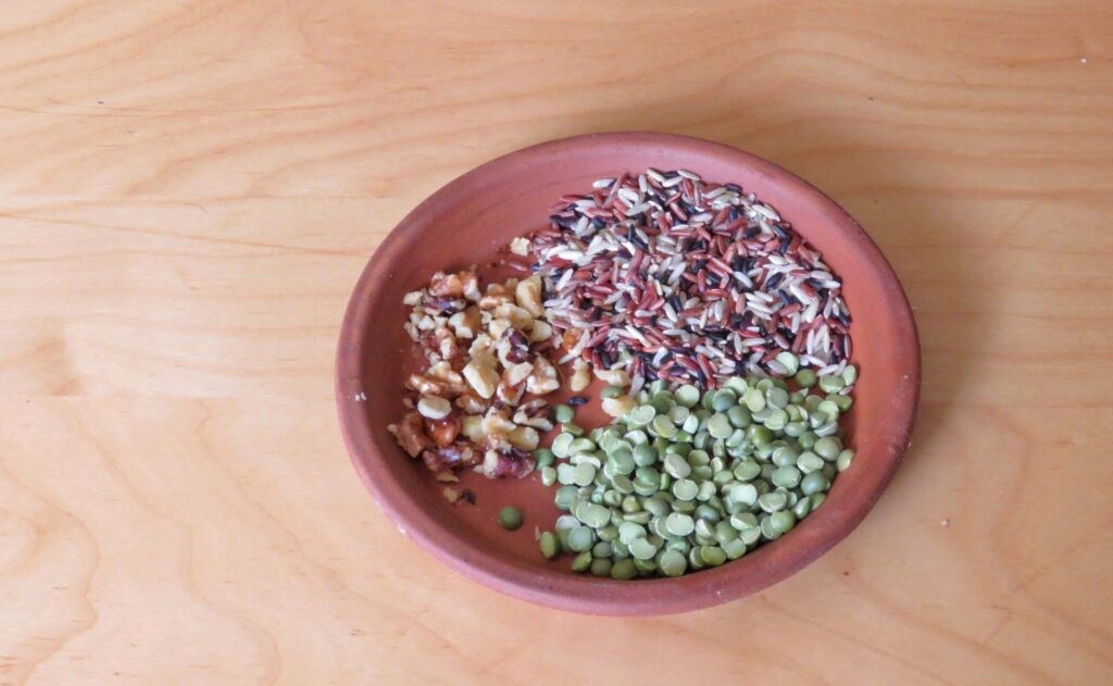 feed backyard birds kitchen scraps and pantry grains